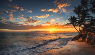 Sunrise on a tropical island. Palm trees on sandy beach.