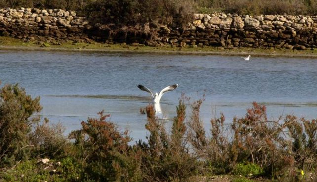 Viaje a Andalucía en velero