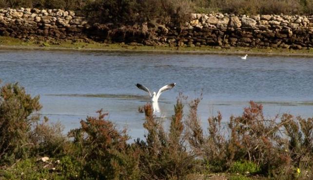 Viaje a Andalucía en Velero. Golfo de Cádiz