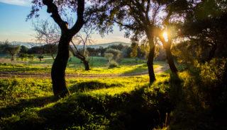 Viaje a Andalucía. Semana Santa. Aventura en Andalucía en 6 días