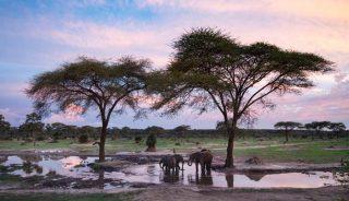 Viaje a Botswana y Cataratas Victoria. En camión. Ruta Río Perdido Clásico 16 días