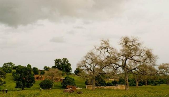 Viaje a Burkina Faso. Grupo Verano