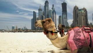 dubai-emiratos-arabes-medida-taranna001