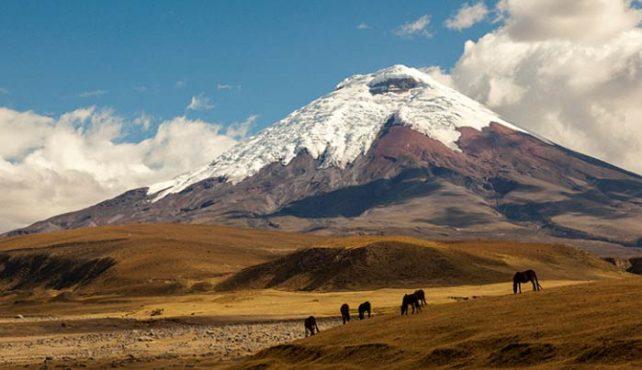 Viaje a Ecuador. En Grupo