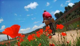 españa-bicicleta-taranna002