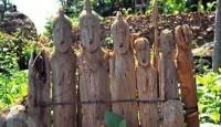 Viaje a Etiopía. A medida. Ruta Norte y Sur 15 Días