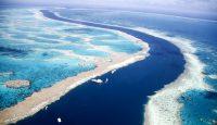 Gran barrera de Coral - Australia Oceanía