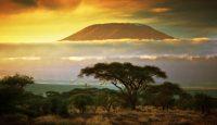 Viaje a Kenia e Islas Seychelles
