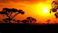 Viaje a Kenia y Mauricio. Itinerario Twiga