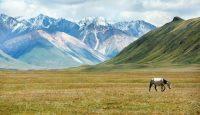Viaje a Kirguistán. Semana Santa. Grupo