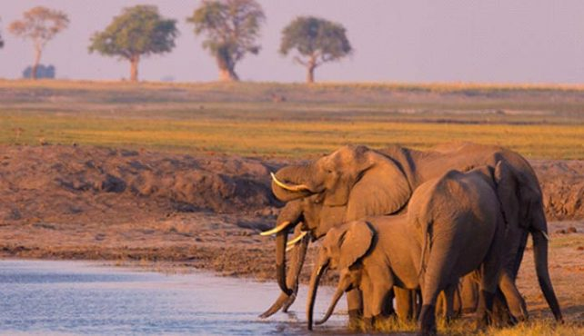 Viaje a Namibia. Fly and drive