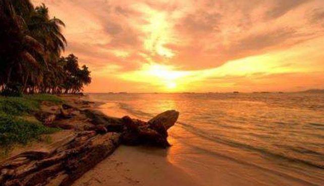 Viaje a Panama. A medida. Contrastes y experiencia