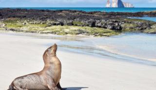 Viaje a Perú y Ecuador. A medida. De Machu Picchu a Galápagos