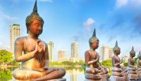 Viaje a Sri Lanka. Grupo verano. Parques Nacionales y Playa