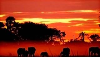 sudafrica-namibia-medida-taranna001