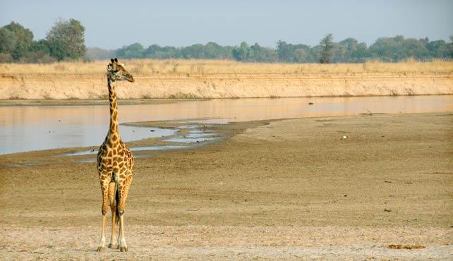 Viaje a Zambia, Malaui y Mozambique