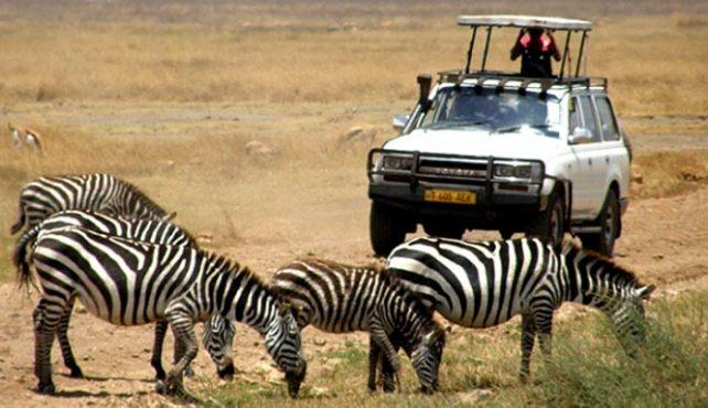 Viaje a Kenia, Tanzania y Zanzíbar. Puente de Diciembre