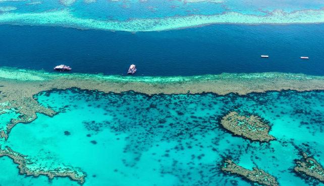 Viaje a Australia. A medida. Parques de Australia