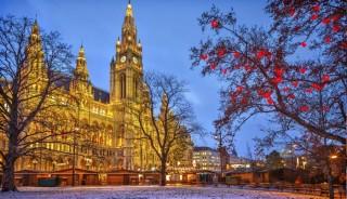 Viaje a Viena. Año nuevo