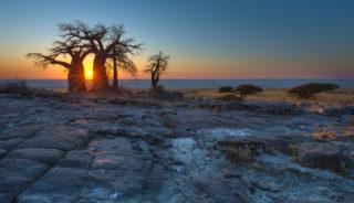 Viaje a Botswana y Cataratas Victoria. Río Perdido Confort