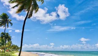 Viaje a Brasil. A medida. Iguazú-Rio de Janeiro-Salvador de Bahía con extensión playa (Opción Praia Do Forte -Boipeba)