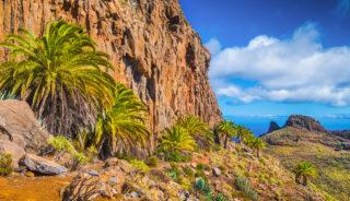 Viaje a las Islas Canarias. Grupo verano. En familia. Continentes en miniatura. La Palma, El Hierro y La Gomera
