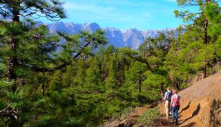 Viaje a Canarias. A medida Nomads. La Palma, varios viajes en uno, en Fly and Drive