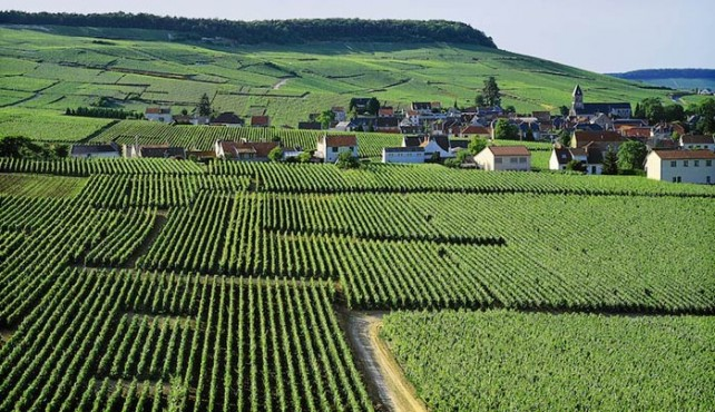 Enoturismo a Francia. Champagne