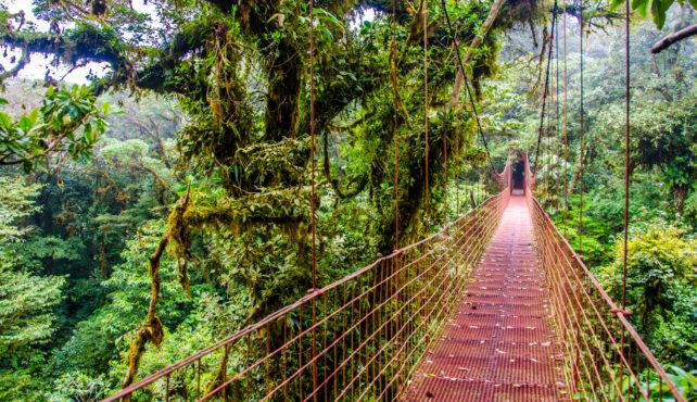 Viaje a Costa Rica en familia