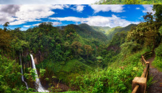Viaje a Costa Rica. A medida Nomads. Aventura y voluntariado.