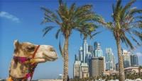 Viaje a Emiratos Árabes Unidos y Omán