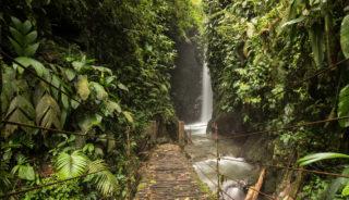 Viaje fotográfico a Ecuador. Las Islas Galápagos con Quim Dasquens