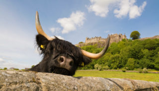 Viaje a Escocia. Grupo Verano. Tierras altas