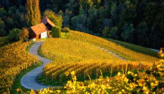 Viaje a Eslovenia. Grupo Verano. La maravillosa Eslovenia