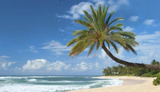 Viaje a Estados Unidos y Hawaii. Fly & Drive