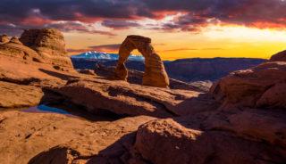 Viaje a Estados Unidos. Grupo verano. Bailando con Lobos en Yellowstone y Parques Nacionales de EEUU