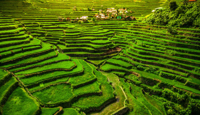 Viaje a Filipinas. Grupo Mínimo 2. Maravillas naturales