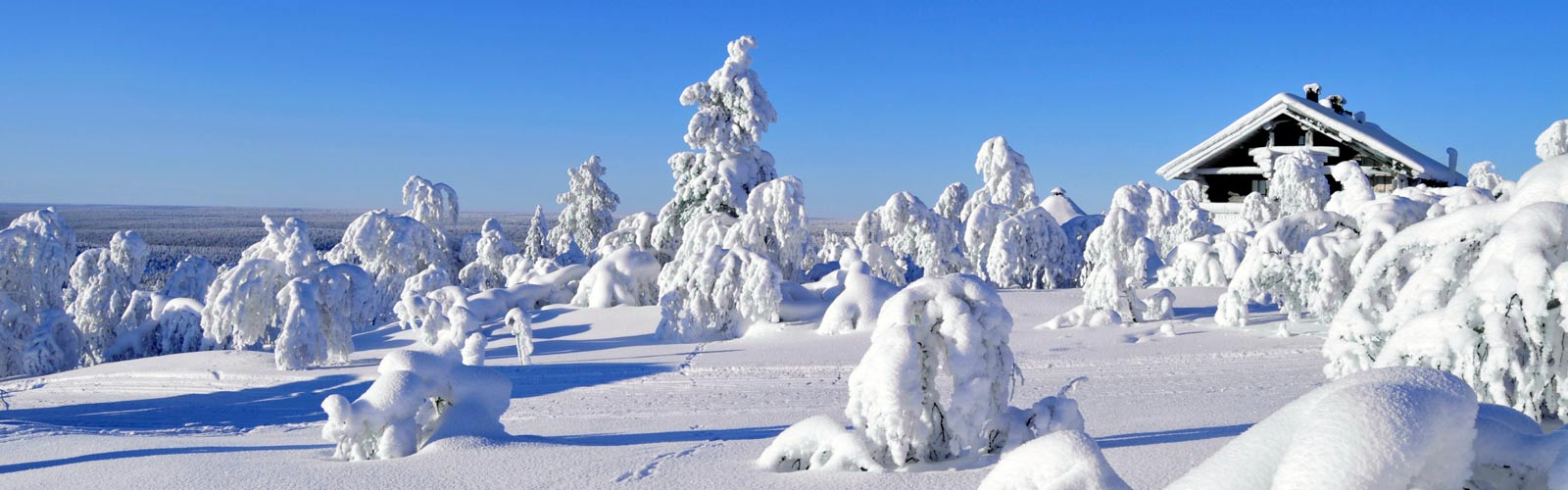 Viaje a Laponia. 6 Dic.