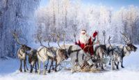 Viaje a Finlandia. Navidad. Viaje a Laponia - Salla, especial Navidad