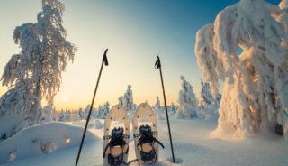 Viaje a Finlandia. En grupo. Viaje a Laponia en Diciembre – Holiday Resort Club Salla