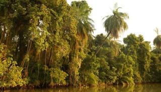Viaje a Gambia. Sostenible