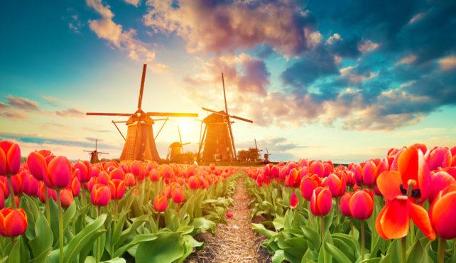 Viaje a Holanda. Semana Santa. Crucero Fluvial por el Rin