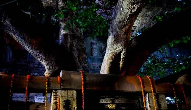 Viaje a India. Buddha Purnima con Juli Garzón