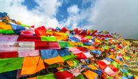 Viaje a la India. Grupo verano. La belleza del norte de la India con Ananda Yoga