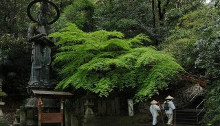 Viaje a Japón. Fotográfico. Shikoku Photo Tour