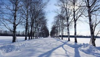Viaje a Japón. Naturaleza y Fotografía en Hokkaido