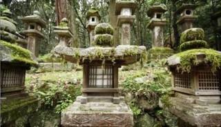Viaje a Japón. Semana Santa. Corazón de Japón