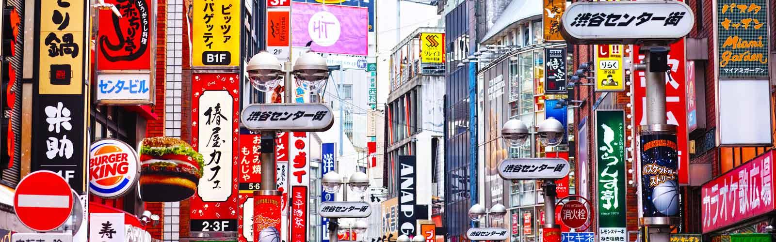 Viaje a Japón Legendario