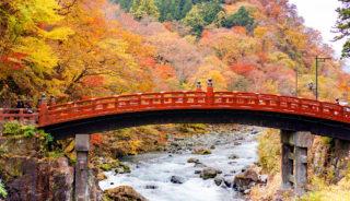 Viaje a Japón. En grupo. Otoño en Japón