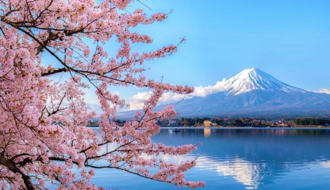 Viaje a Japón. Semana Santa. En grupo. El país de los contrastes